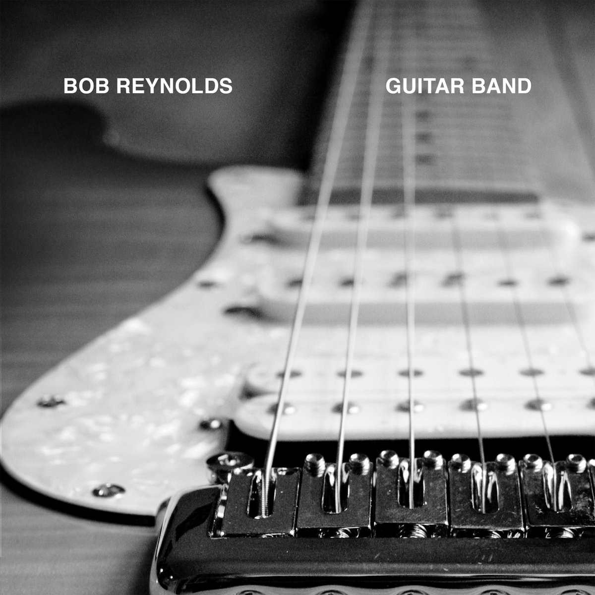 Image result for bob reynolds guitar band