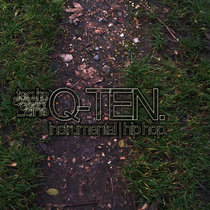 SRL Networks Presents Q-Ten cover art
