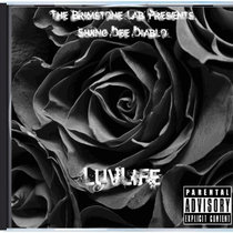 Luv/Life Vol.1(The Taste Of...) cover art