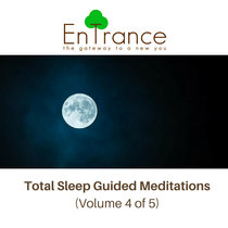 Deep Sleep Guided Hypnotic Meditations #4 cover art