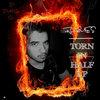 Torn In Half LP Cover Art