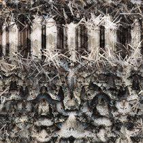 Newt Scamander ep cover art