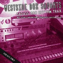 (Strange Life Records SLR02D) Badass 808 Rhtythm Trax cover art