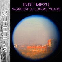 Wonderful School Years cover art