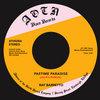 RAY BARRETTO - Pastime Paradise (Jay-K's ReWork)