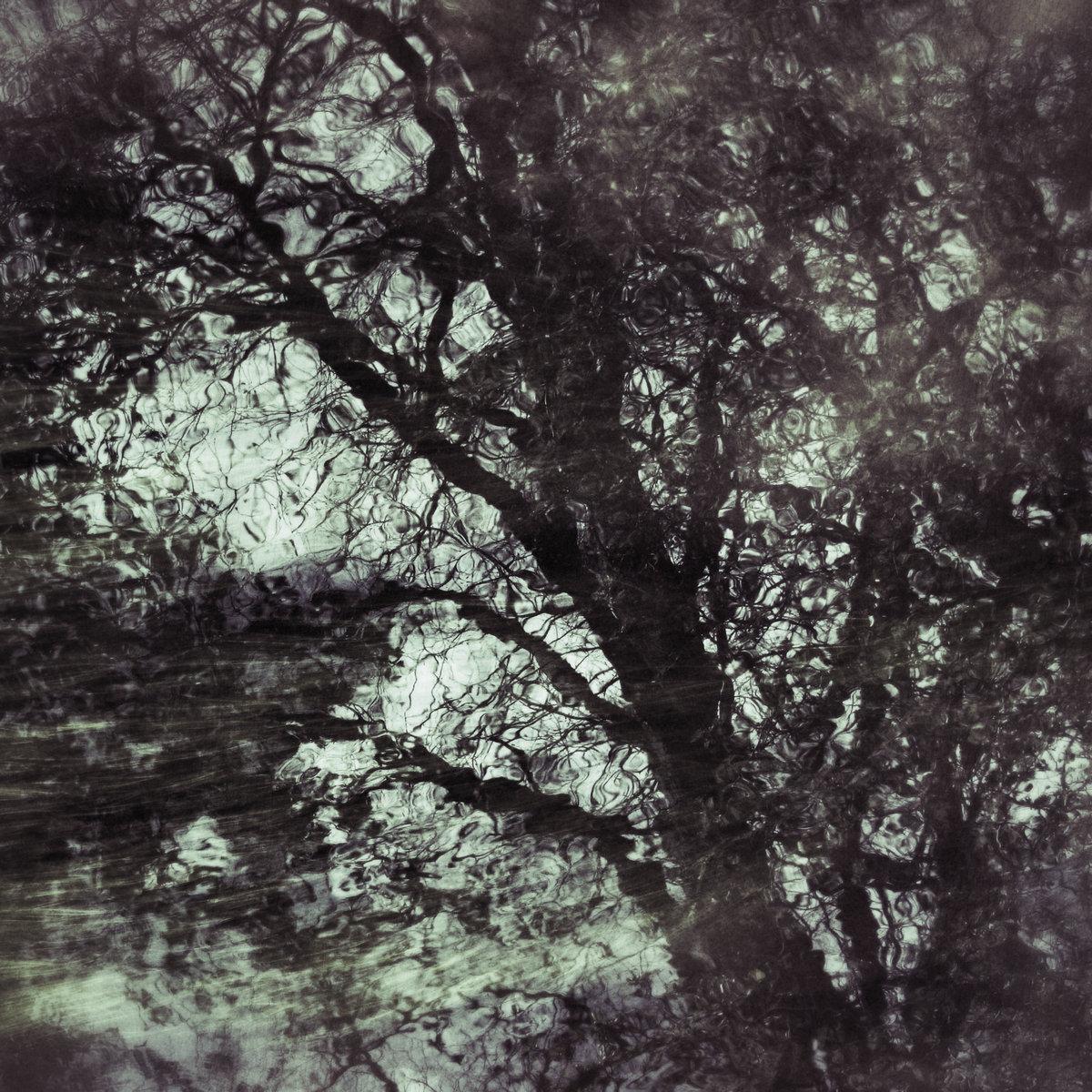 Ambient Soundscape: Twelve (Video Version)   An Imaginal Space