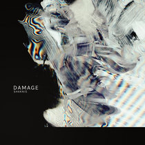 Shaknis - Damage cover art