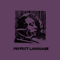 VA - Perfect Language cover art