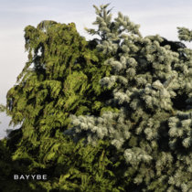 Bilo 503 - Bayybe cover art