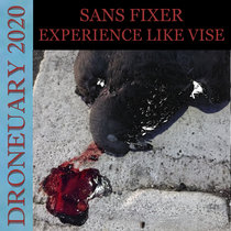 Experience Like Vise cover art