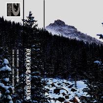 Deafest / Sinding Split cover art