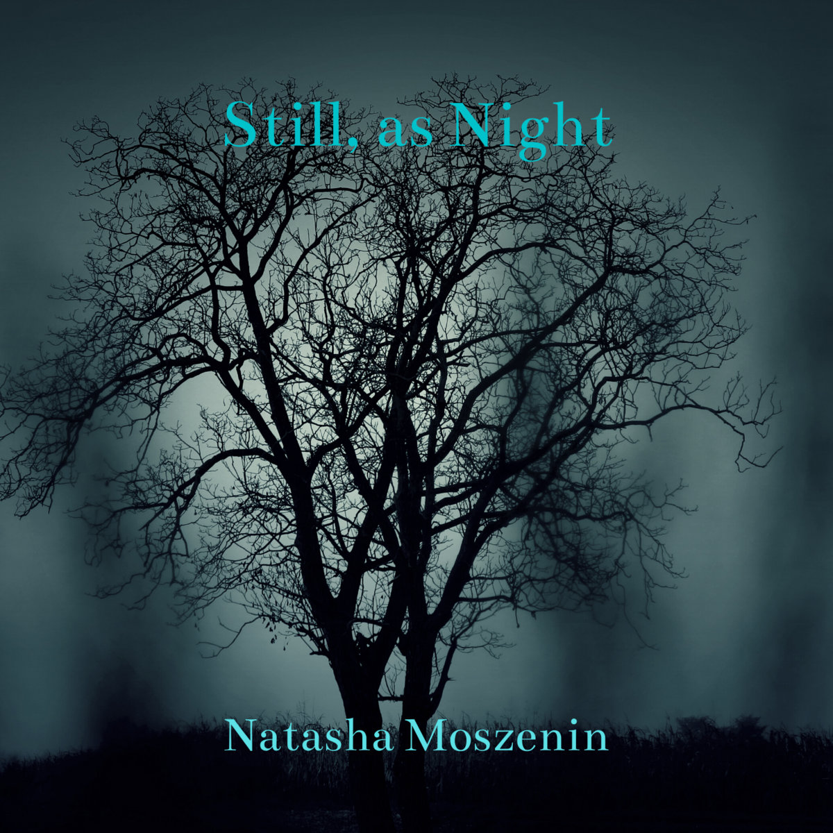 Still, as Night by Natasha Moszenin