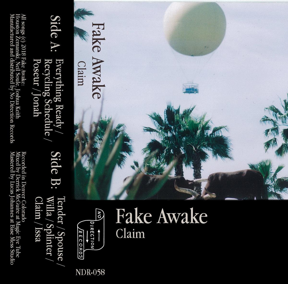 Fake Awake