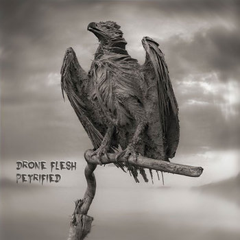 Petrified by Drone Flesh