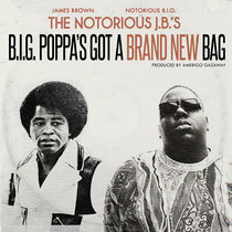 The Notorious J.B.'s - B.I.G. Poppa's Got A Brand New Bag (Single) cover art