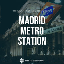 Madrid Metro Station And Train Interior Ambience cover art