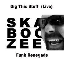 Dig This Stuff (Jam) - Funk Renegade cover art