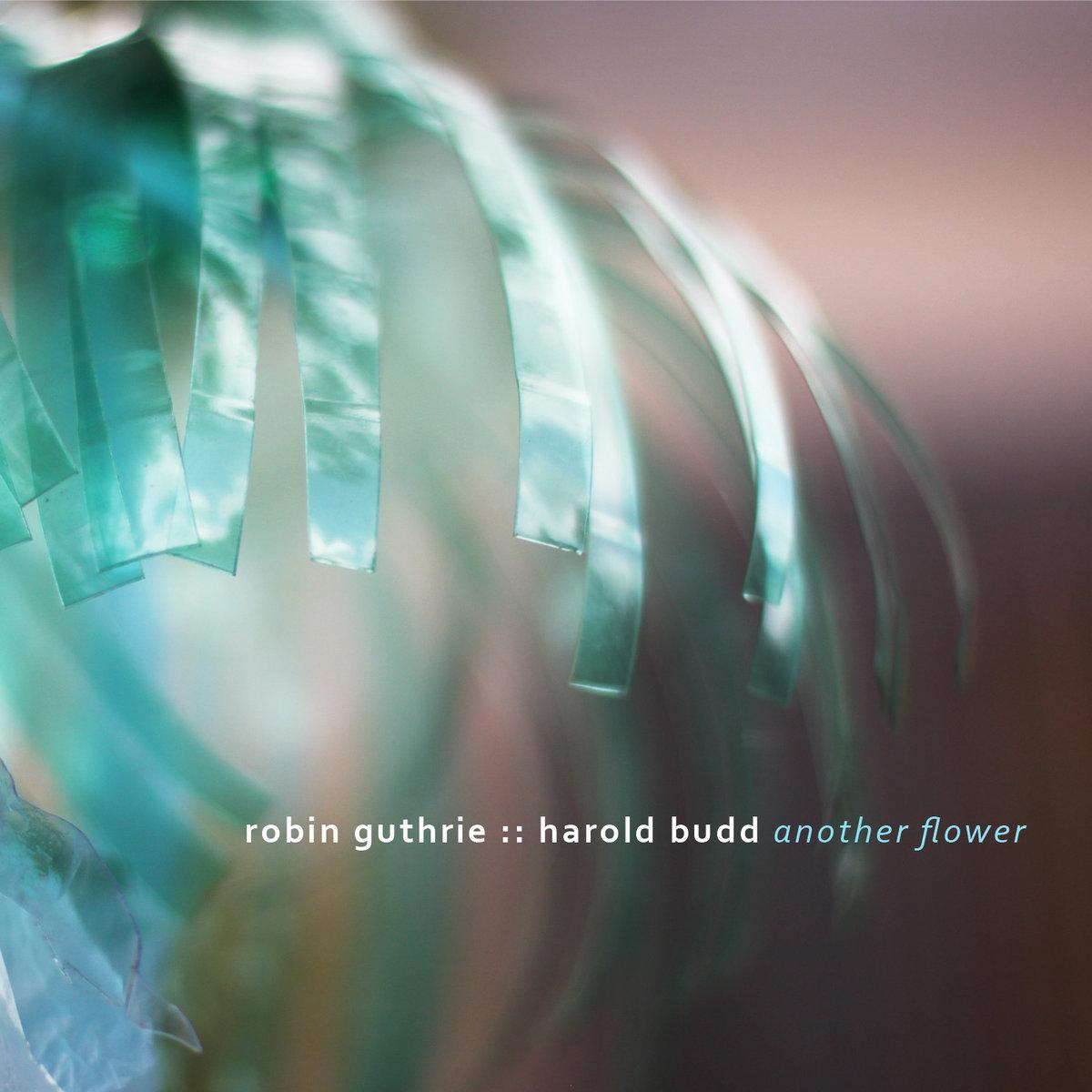 Another Flower | Robin Guthrie & Harold Budd | Robin Guthrie