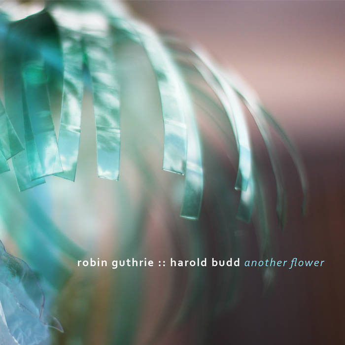 Another Flower / Robin Guthrie & Harold Budd