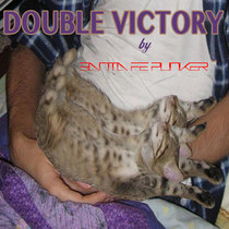 Double Victory cover art