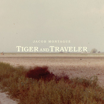 Tiger And Traveler