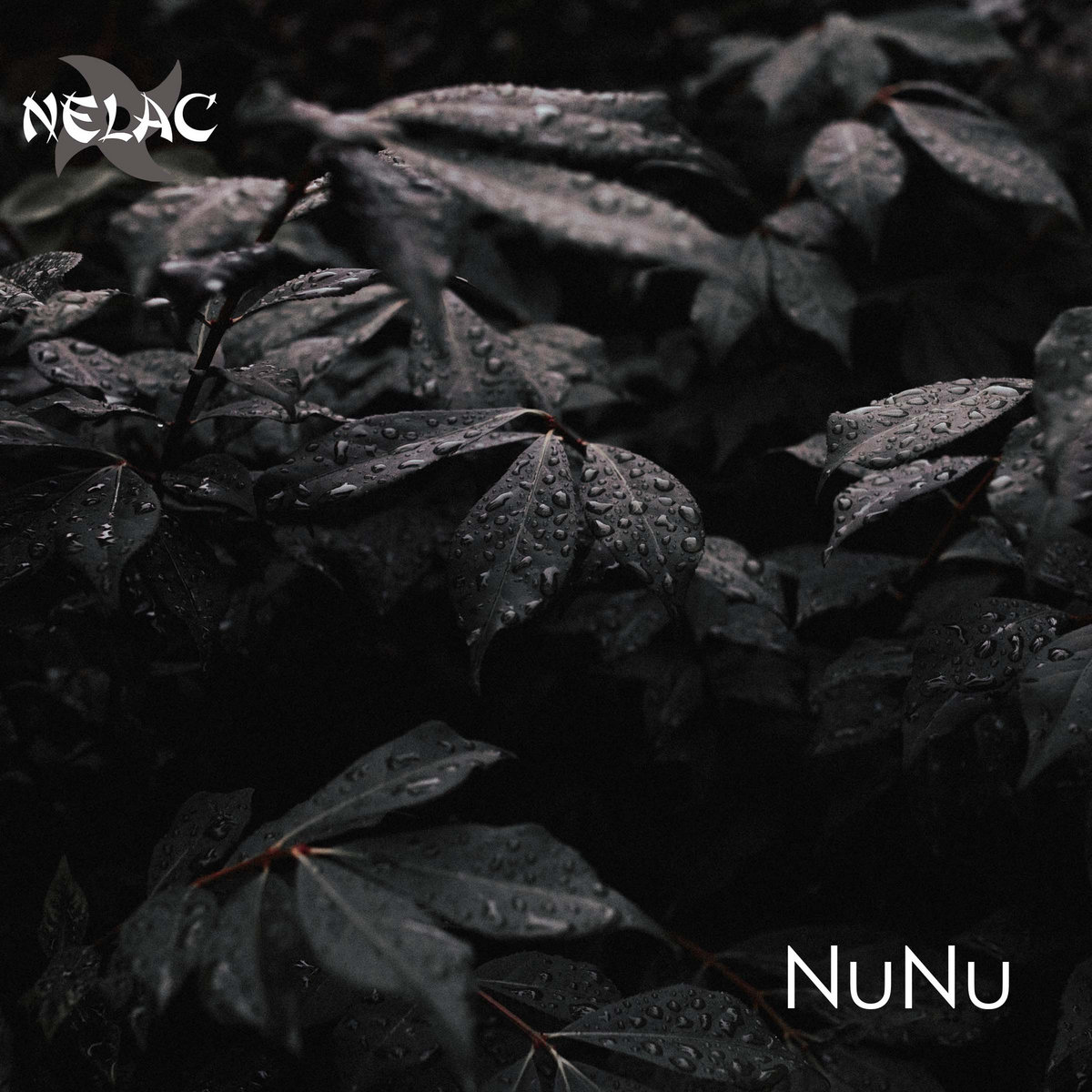 NuNu by NELAC