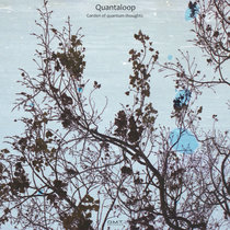 Garden of quantum thoughts cover art