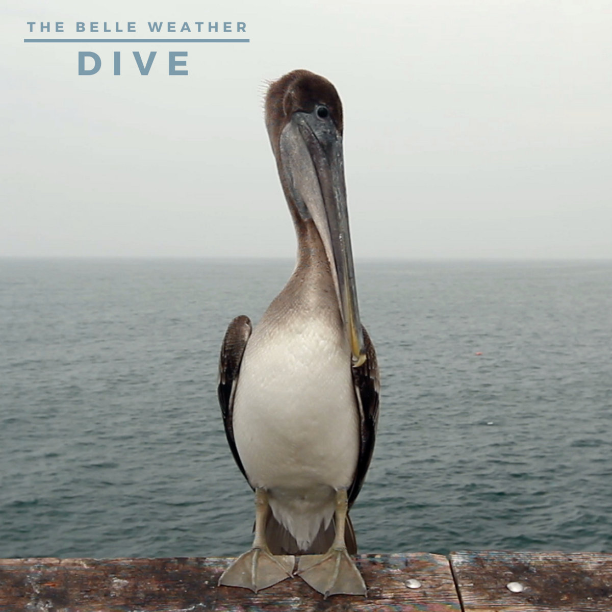 Dive (2020) by The Belle Weather