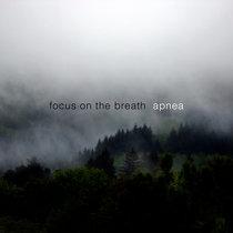 Focus on the Breath - Apnea cover art