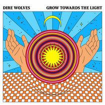 Grow Towards the Light cover art