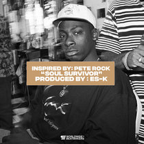 """Inspired By: Pete Rock """"Soul Survivor"""" cover art"""