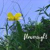 flowersight Cover Art