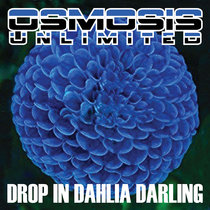 Drop In Dahlia Darling cover art