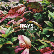 rays cover art