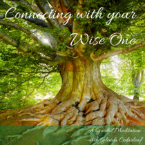 Connecting With Your Wise One cover art