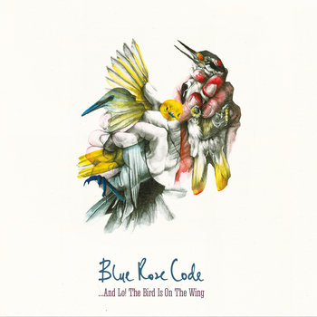 ...And Lo! The Bird Is On The Wing - VINYL by Blue Rose Code