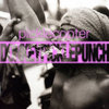 DONKEY PICKLE PUNCH Cover Art