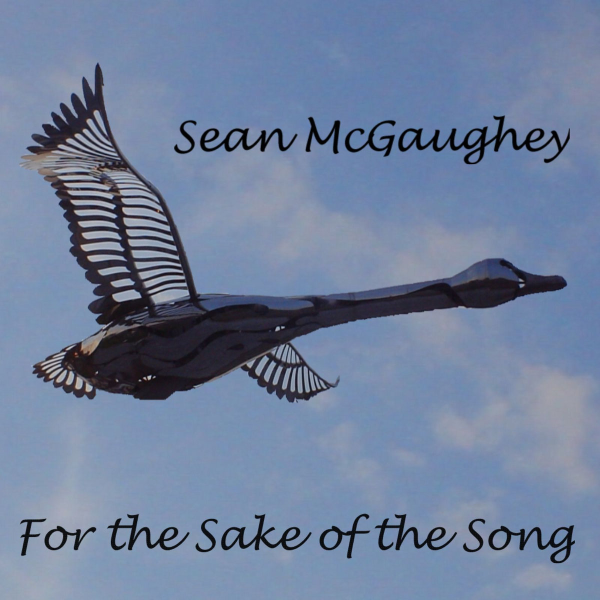 For the Sake of the Song | Sean McGaughey