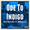 Ode To Indigo Cover Art