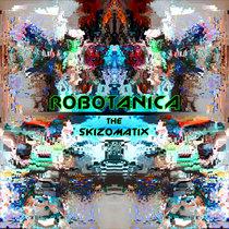 The Skizomatix [24Bits] cover art
