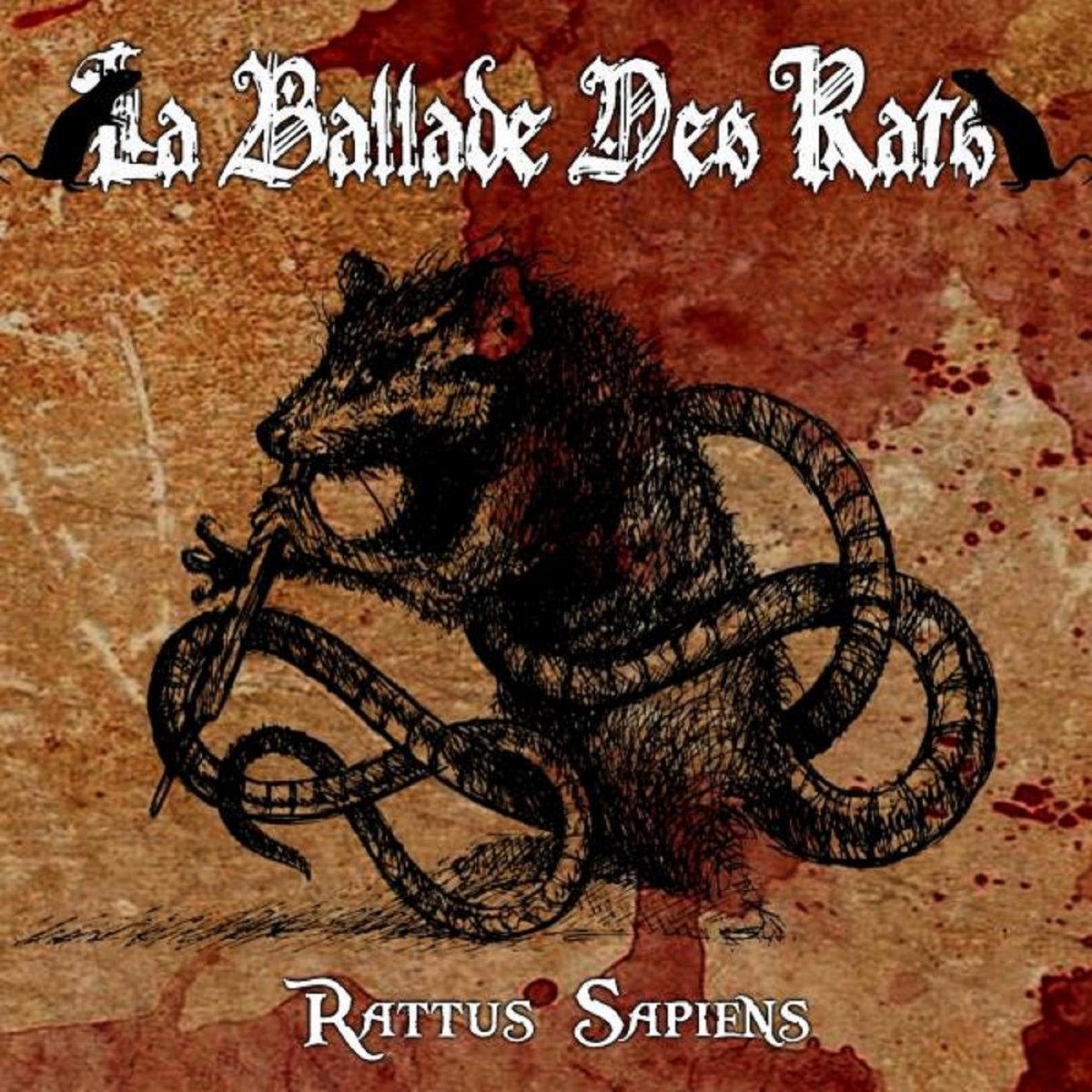 La ballade des rats rattus sapiens chronique le scribe du rock