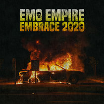 Embrace 2020 cover art