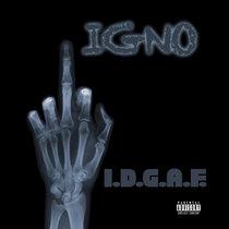 I.D.G.A.F. cover art