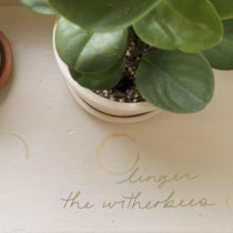 linger cover art