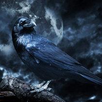 Raven Stops The Rain (BU CD) cover art