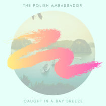 Caught in a Bay Breeze cover art