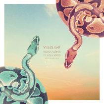 Snakecharmer ft. Ayla Nereo & The Polish Ambassador cover art