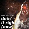 Doin' It Right (Now) (Daft Punk remix) Cover Art