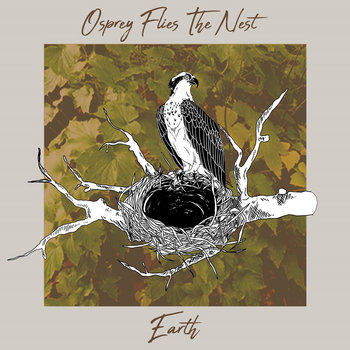 Earth by Osprey Flies The Nest