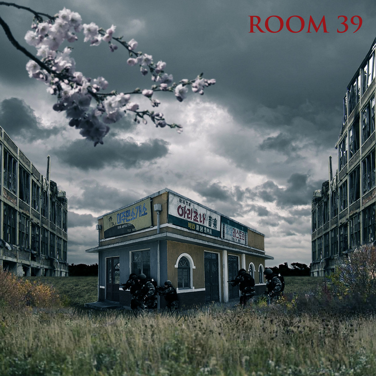 Room 39 | Ty Farris